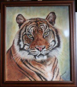 Tygr, 2020, 45x53 cm, pastel